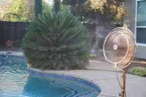 misting-fan-at-backyard-pool